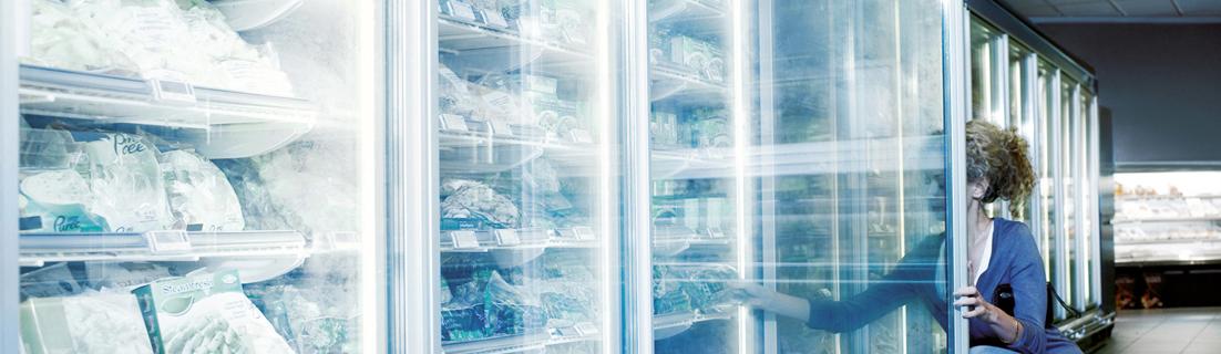 Шапка страницы: Морозильные установки